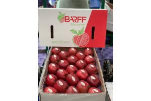 barff-7