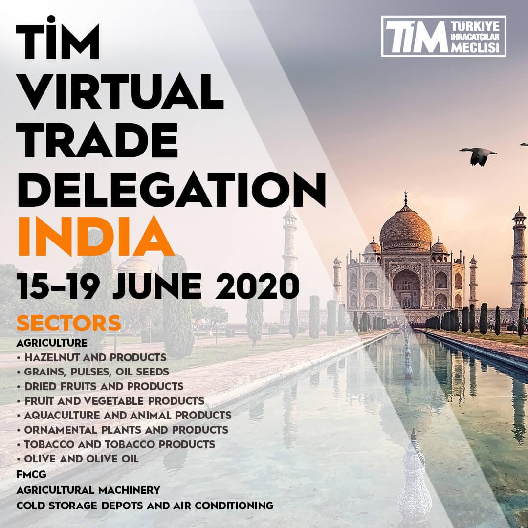 India Virtual Trade Delegation